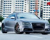 V8 Wonderland (Audi S5 4.2 V8)