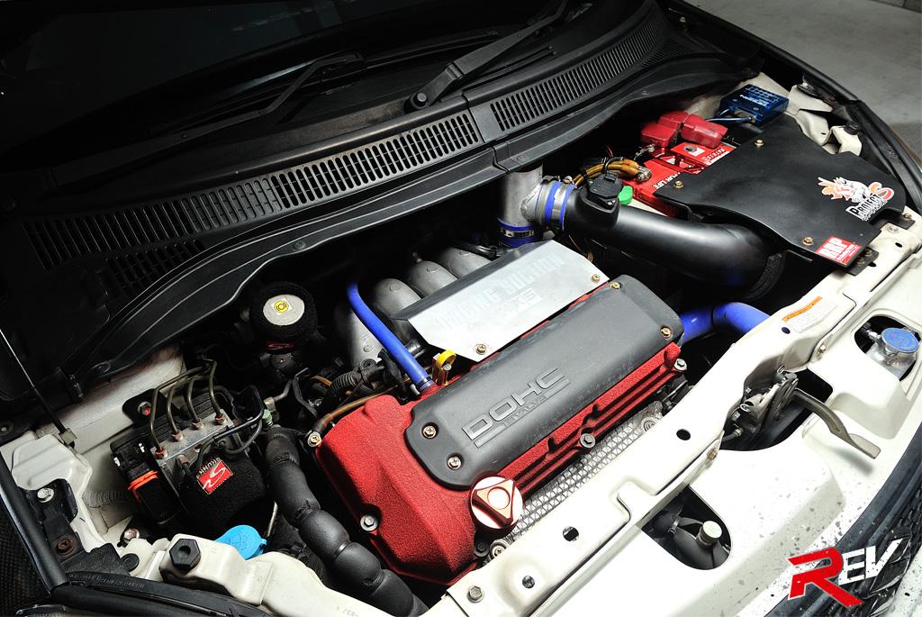 Nerves Of Carbon Suzuki Swift Sport